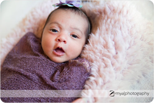 Lead image for Foster City Newborn Photographer